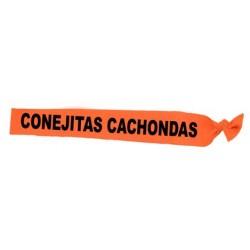 "BANDA ""CONEJITAS CACHONDAS"""